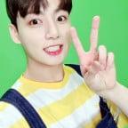 BTS Naver Blog Permission to Dance Selfies